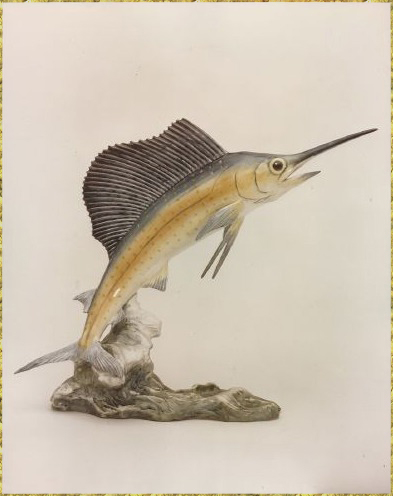 Atlantic Sailfish Miniature