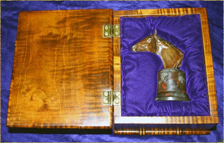 Polo Pony Presentation Box
